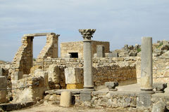 Ville antique Volubilis Image stock