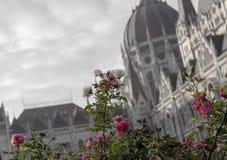 Ville Budapest d'automne image libre de droits