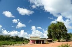 Ville d'Amazone Photos stock