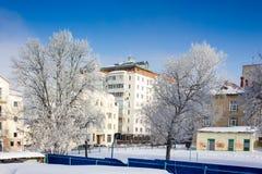Ville d'hiver avec des arbres. Photo stock