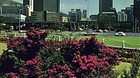 Ville de Cape Town banque de vidéos