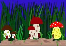 Ville de champignon Photographie stock libre de droits