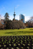 Ville de ciel d'Auckland photo stock