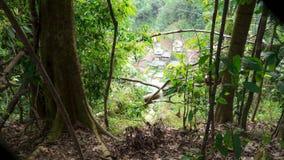 Ville de jungle vue des arbres ci-dessus Photos stock