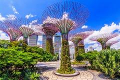 Ville de Singapour, Singapour Images libres de droits
