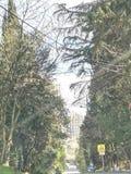 Ville de Sotchi 2019 ans image libre de droits