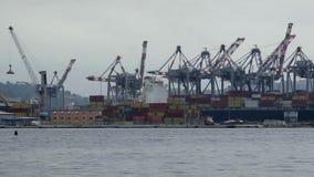 Ville de Spezia de construction d'entreposage en récipient, le commerce global, exportation de port banque de vidéos