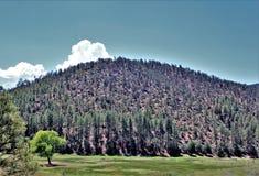 Ville de vallée d'étoile, Gila County, Arizona, Etats-Unis, réserve forestière de Tonto Photographie stock