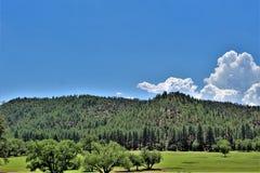 Ville de vallée d'étoile, Gila County, Arizona, Etats-Unis, réserve forestière de Tonto Image stock