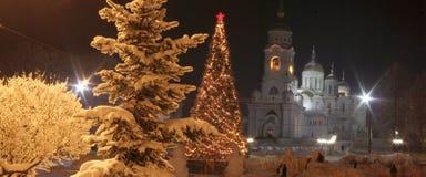 Ville de Vladimir Photographie stock libre de droits