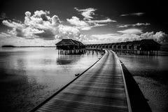 Ville di lusso dell'acqua e pilastro di legno nell'isola delle Maldive Fondo di festa di viaggio o di vacanze estive Immagini Stock Libere da Diritti