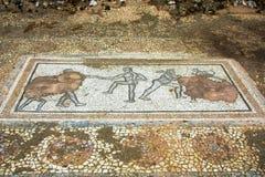 Ville Dion de Grèce antique Mosaïque sur le plancher de la Chambre de Dionysos Parc archéologique de ville sacrée de Macedon image stock