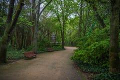 Ville historique de jardin du centre de l'Espagne Photo stock