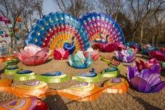 Ville 2016 internationale de carnaval de lanterne magique de Changhaï de lumière Photo libre de droits