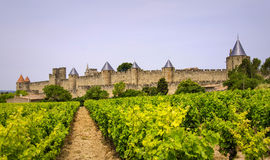 Ville médiévale de Carcassonne dans les Frances Photographie stock