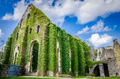 Villers Cistercian修道院  免版税库存照片
