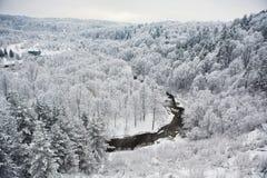 Vilnia flod Arkivfoto