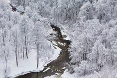 Vilnia river Stock Images