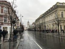 Vilnius η πρωτεύουσα της Λιθουανίας στοκ εικόνα με δικαίωμα ελεύθερης χρήσης