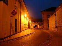 Vilnius 009 Images libres de droits