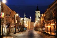 Vilnius Zdjęcia Stock