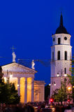 Vilnius Cathedral Stock Photography
