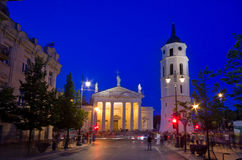 Vilnius Cathedral. With people at night stock images