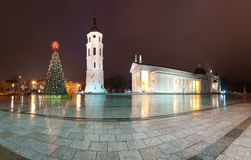 Vilnius cathedral. Lithuania, Europe. Stock Images
