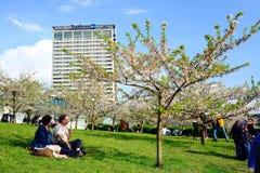 Vilnius city hotel Radisson Blu on April 28, 2015 Stock Photo