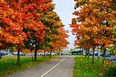 Vilnius city street view at autumn time Stock Photo