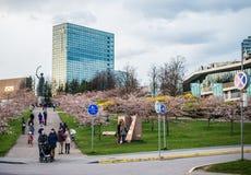 Vilnius favourite place Stock Photo