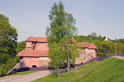 Vilnius Gediminas castle ruins in spring time Stock Photos