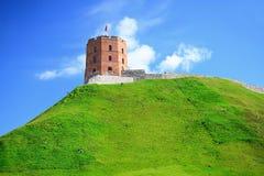 Vilnius Gediminas slott på kullen nära den Neris floden Arkivfoton