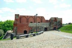 Vilnius Gediminas slott på kullen nära den Neris floden Arkivbild