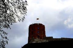 Vilnius, Gedimino castle. Vilnius, Lithuania travel enjoying nice city landscapes and architecture details stock images
