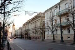 Vilnius Gedimino pr Arkivbild