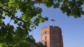 Vilnius historical Gediminas castle tower with flag stock video