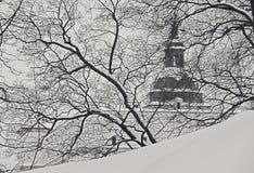vilnius katedralna kościelna zima Obraz Stock