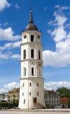 Vilnius-Kathedrale Belfry an einem schönen Sommertag Stockbilder