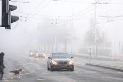 VILNIUS LITAUEN - 21 OKTOBER, 2018: Dog fotgängaren som passerar den dimmiga stadsgatan under morgonvägtrafik royaltyfri fotografi