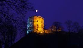Vilnius Lithuania, Gediminas castle Stock Photography