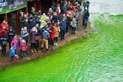 VILNIUS, LITHUANIA - MARCH 18, 2017: Hundreds of people enjoying festivities and celebrating St. Patrick`s day in Vilnius. Vilnele river was dyed green to mark Stock Images