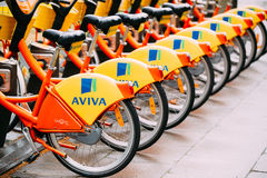 Vilnius, Lithuania. Row Of Colorful Bicycles AVIVA For Rent At Municipal Bike Parking In Street. Royalty Free Stock Images