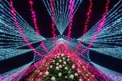 VILNIUS, LITUÂNIA - 3 DE DEZEMBRO: Opinião da noite da árvore de Natal a mais bonita na Europa, um tiro da parte inferior fotos de stock royalty free