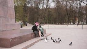 Vilnius, Lituania Las palomas de alimentación de la mujer joven las palomas acercan al monumento a Duke Gediminas In Cathedral Sq metrajes