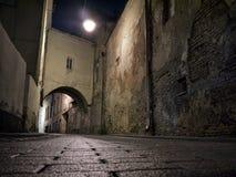 Vilnius nachts Lizenzfreies Stockbild