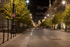 Vilnius at night Royalty Free Stock Photo