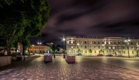 Vilnius at night Stock Photos