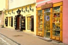 Vilnius shoppar gamla centrumsouvenir vintersikt Royaltyfri Fotografi