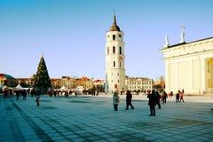Vilnius-Stadthauptstadt des Litauen-Kathedralenplatzes Lizenzfreie Stockfotos